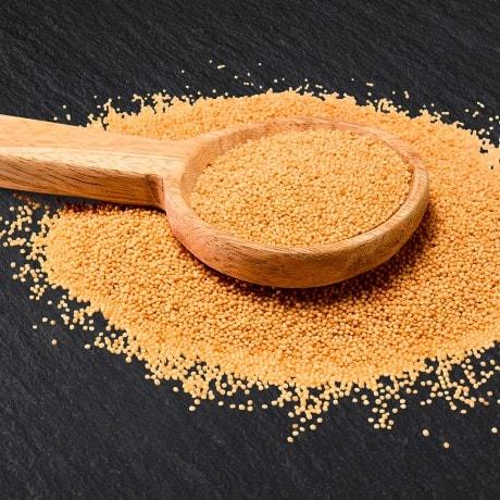 Amaranth Knorr