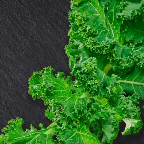 Kale is a brassica and belongs to the cabbage family.