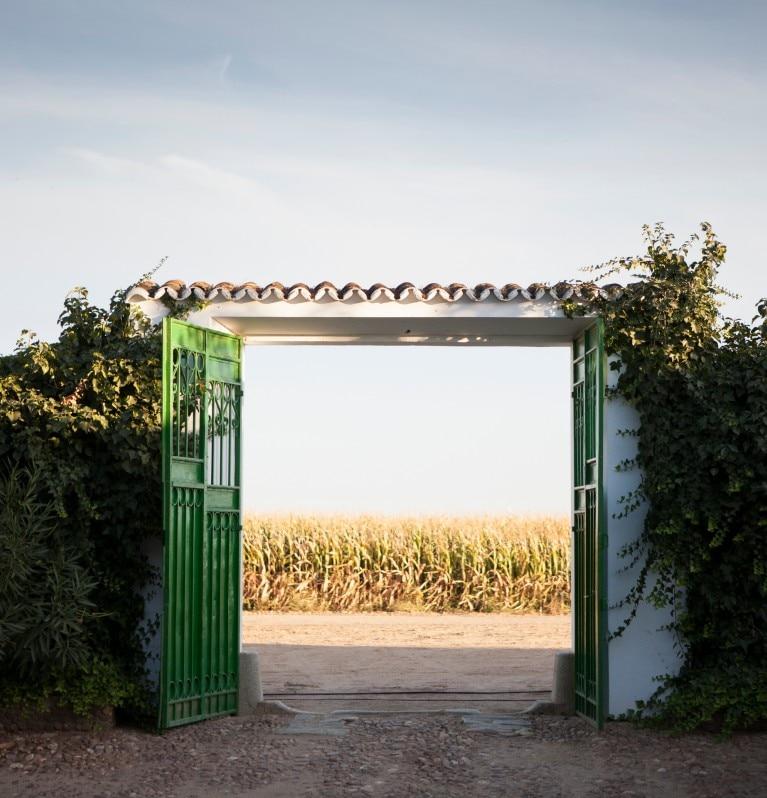 Portão aberto com plantas para uma paisagem