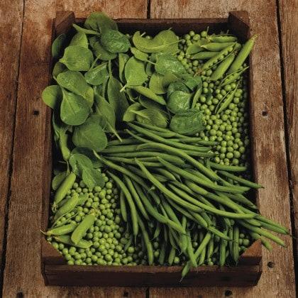 La verdura e la frutta di primavera