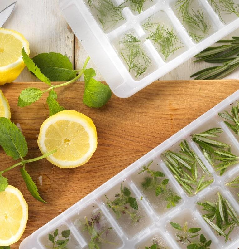 Forma de gelo com limão e alecrim