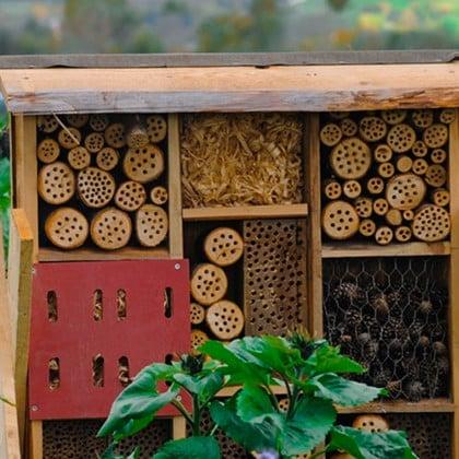 Building bee hotels